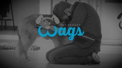 Wags Pet Resort