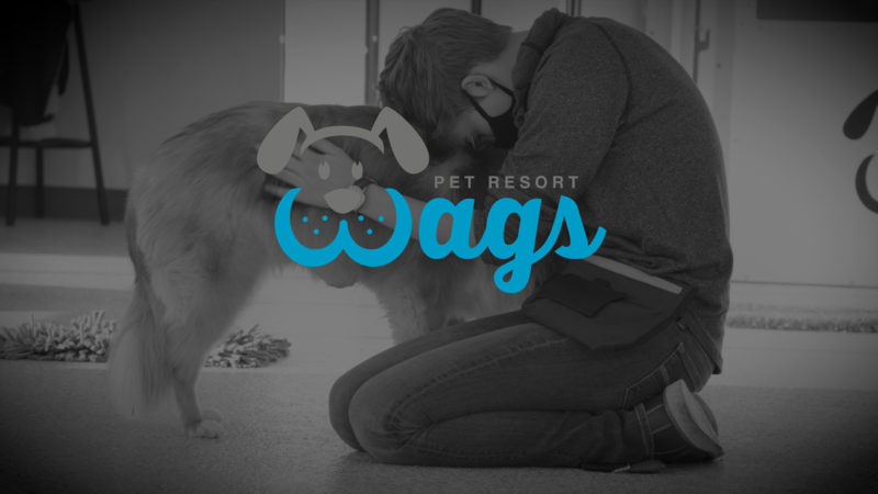 Wags Pet Resort